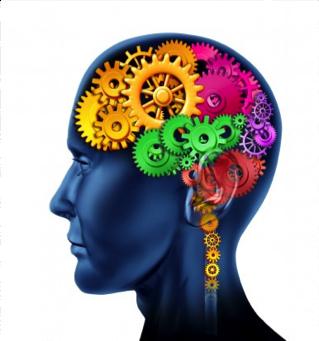 Need a Better Brain?