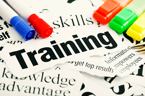 What kind of training is most important to you?