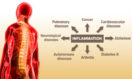 The Real Deal with Inflammation & Inviting you to our Cholesterol Workshop on March 21st