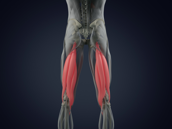 Stretch Your Hamstrings!
