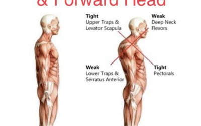 What does this posture tell us?